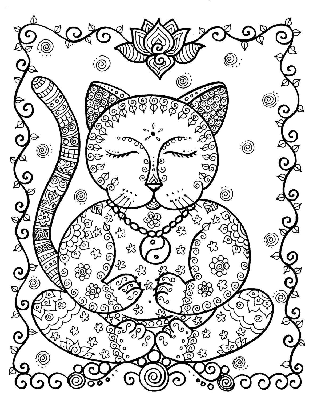 Full-Size-Spirale Buch für Katzenliebhaber aller Altersgruppen ...