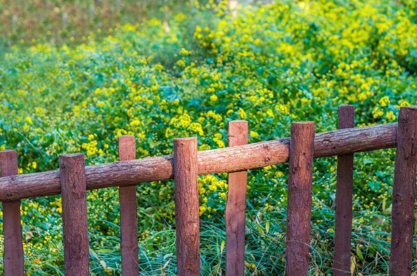 Resultado de imagem para CERCAS ANTIGAS MENSAGENS Pinterest - cercas para jardin
