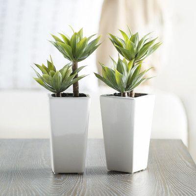 Primrue Mini 2 Piece Artificial Agave Plant In Planter Set Agave Plant Desk Top Plants Faux Plants And Trees