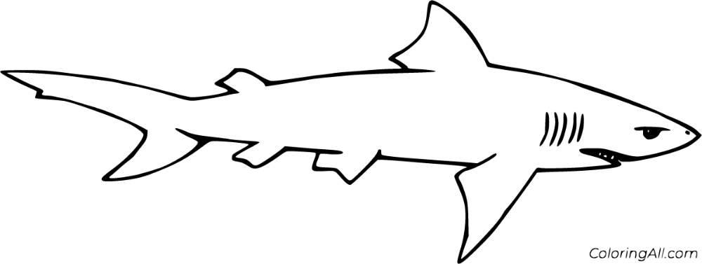 6 Free Printable Lemon Shark Coloring Pages In Vector Format Easy To Print From Any Device And Automati Shark Coloring Pages Coloring Pages Fish Coloring Page
