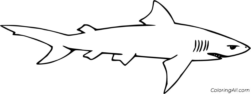 Lemon Shark Coloring Pages Design