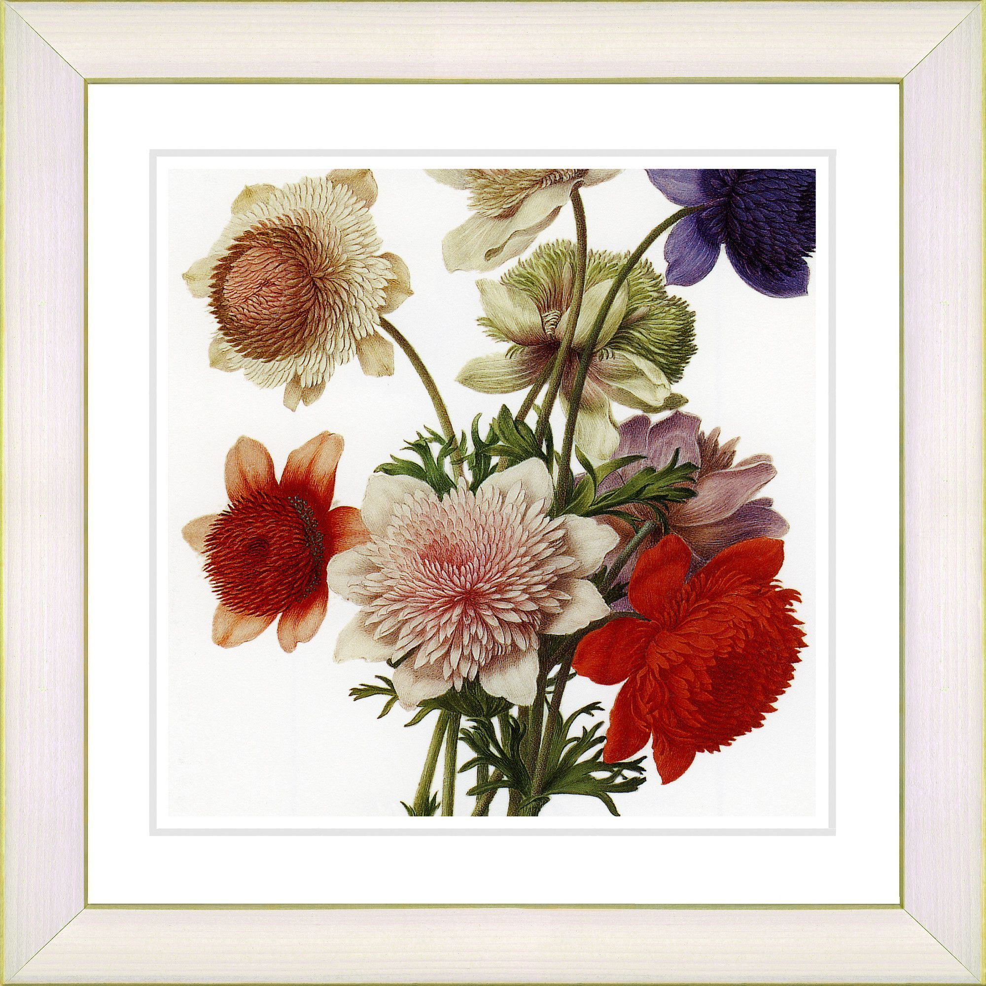 Vintage Botanical No. 20aW by Zhee Singer Framed Giclee Print Fine Wall Art
