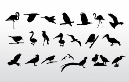 Birds Collection Birds Collection Is Free Vector Animal That You Can Download For Free File In Ai Eps Bird Silhouette Silhouette Vector Silhouette Clip Art
