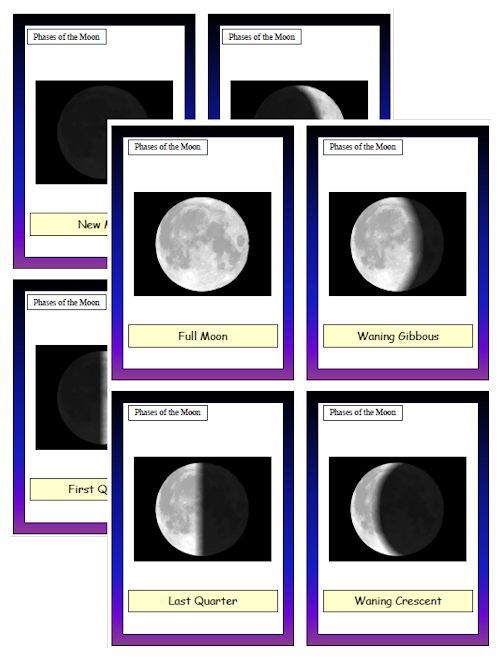 Phases of the Moon download - Download Club members can download @ http://christianhomeschoolhub.spruz.com/space-day.htm
