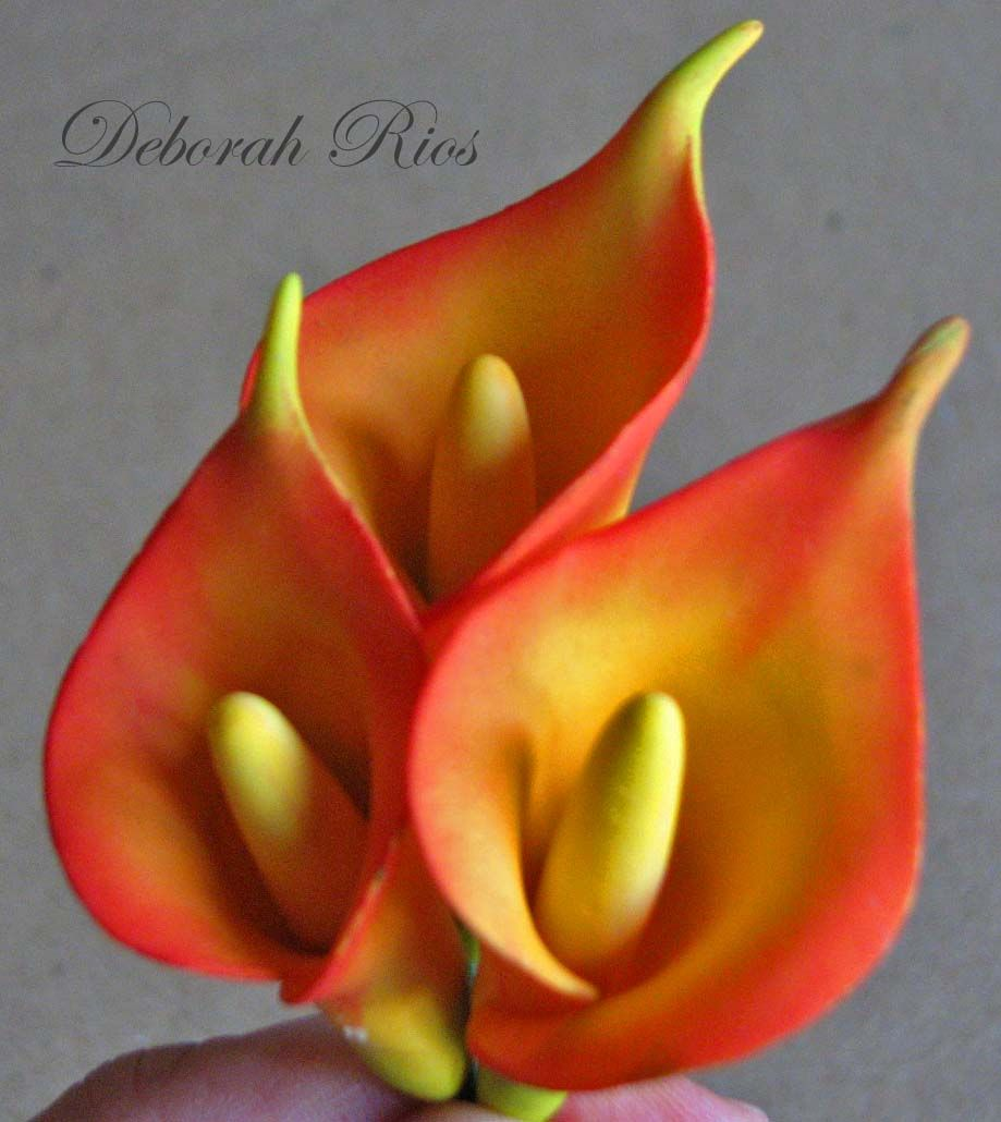 Yellow/orange callas lilies https://www.facebook.com/pages/Sugared-Inspirations-by-Debbie/285566214348?ref=tn_tnmn