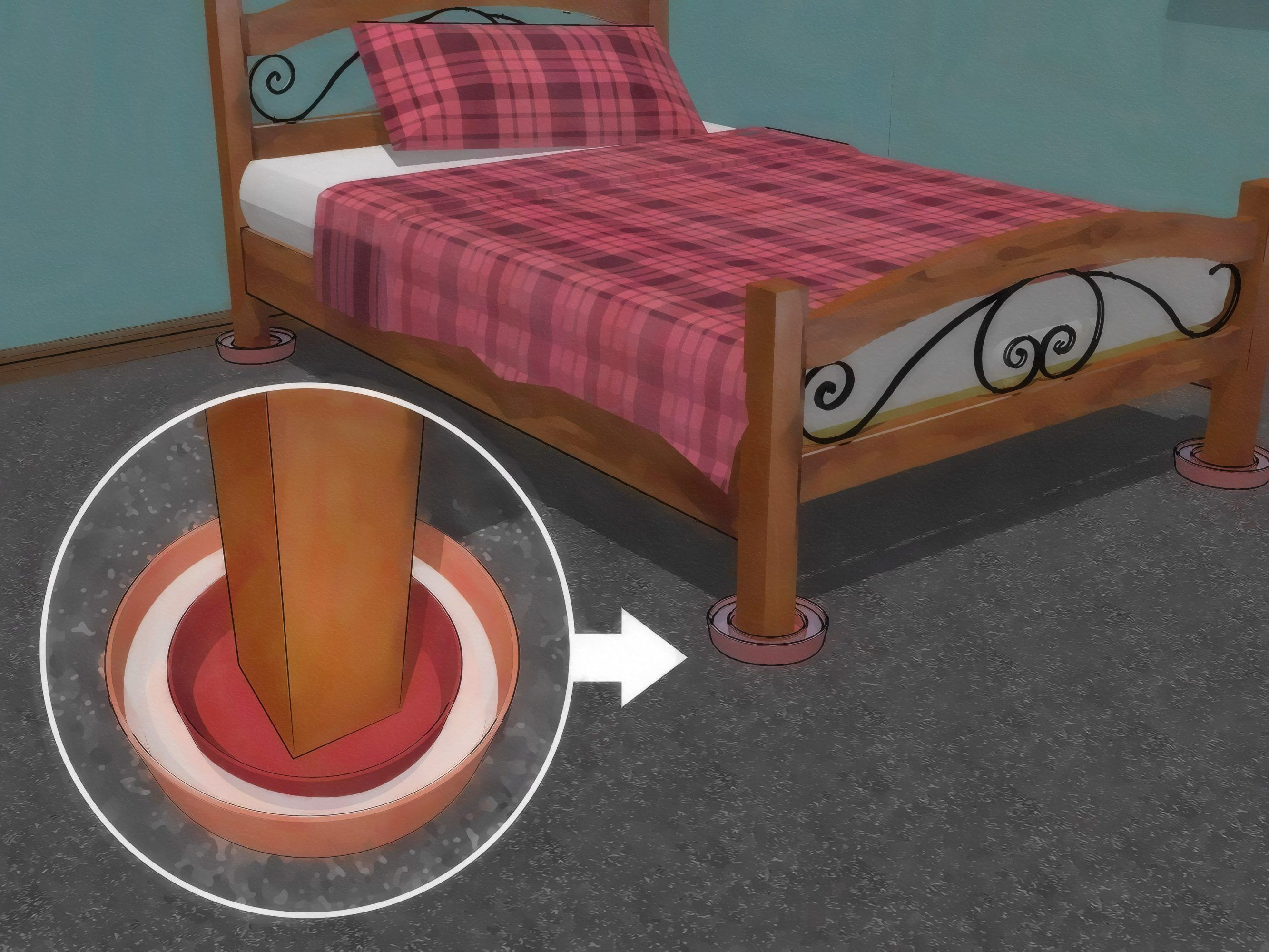 How to Get Rid of Bed Bug in Very Simple Steps Rid of