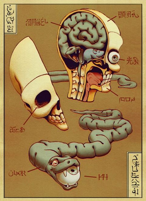 A pair of images inspired by Tibetan anatomical charts