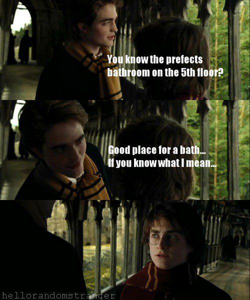 You Don T Even Want To Know What Cedric Means Harry Potter Memes Hilarious First Harry Potter Harry Potter Funny