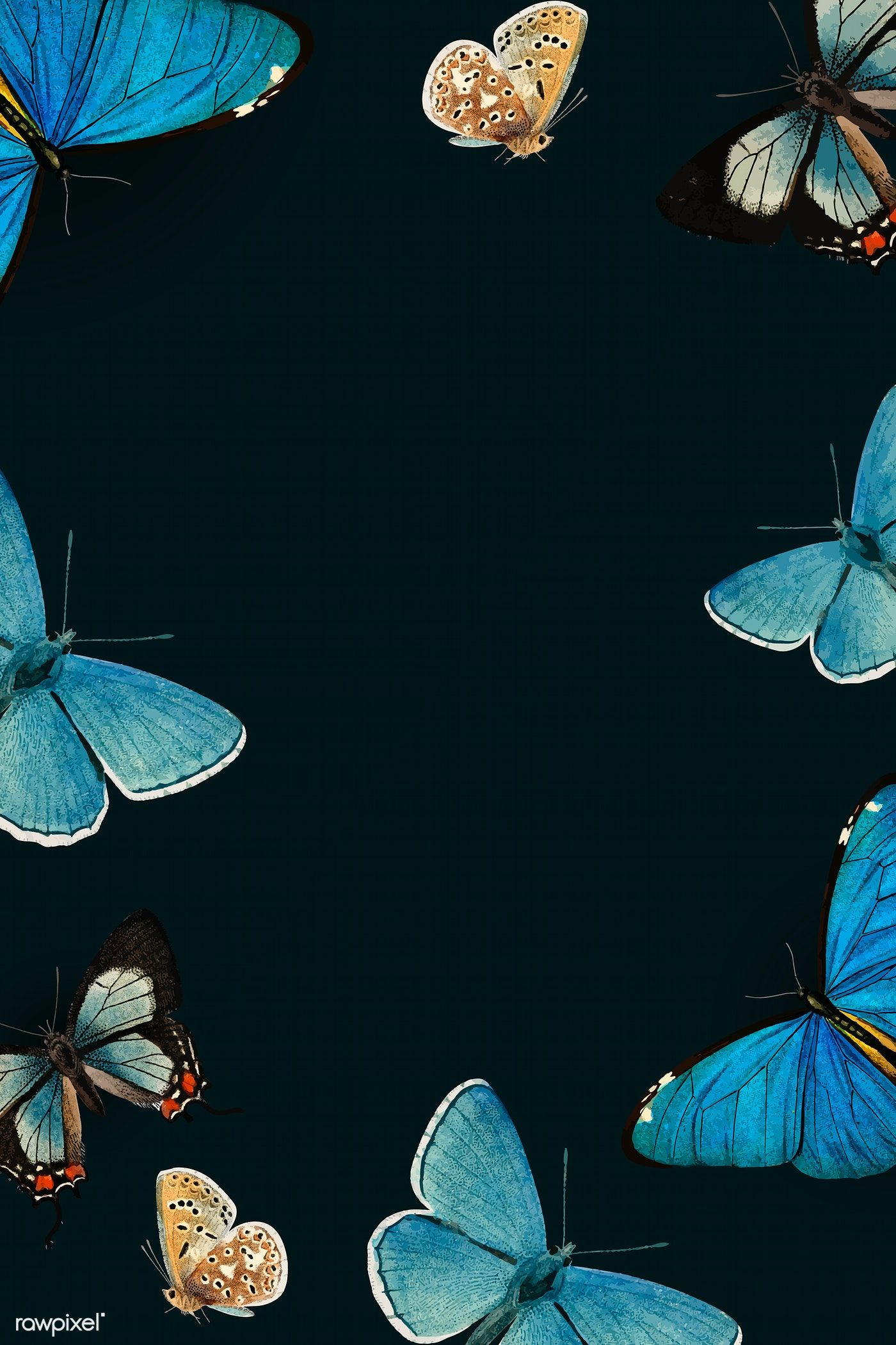 Download Premium Vector Of Blue Butterflies Patterned On Black Background In 2020 Blue Butterfly Black Background Painting Butterfly Wallpaper Backgrounds