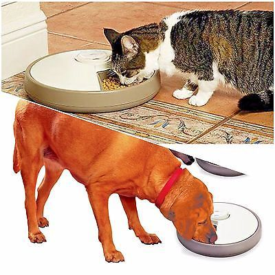 6 Day Automatic Pet Feeder Dish Timer Tray Cat Dog Puppy Programmable Cool Food