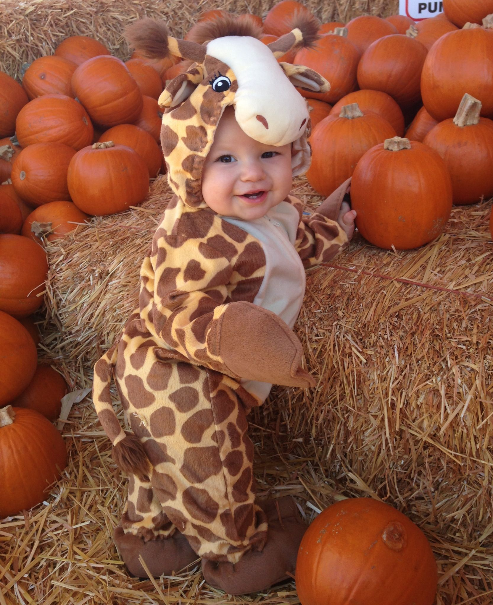Baby costume (With images) Pumpkin patch pictures baby