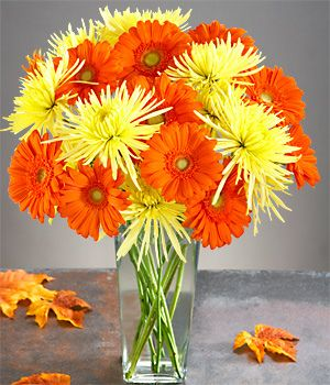 Pin By Adria Robertson On Flowers Daisy Centerpieces Spider Mums Gerber Daisies