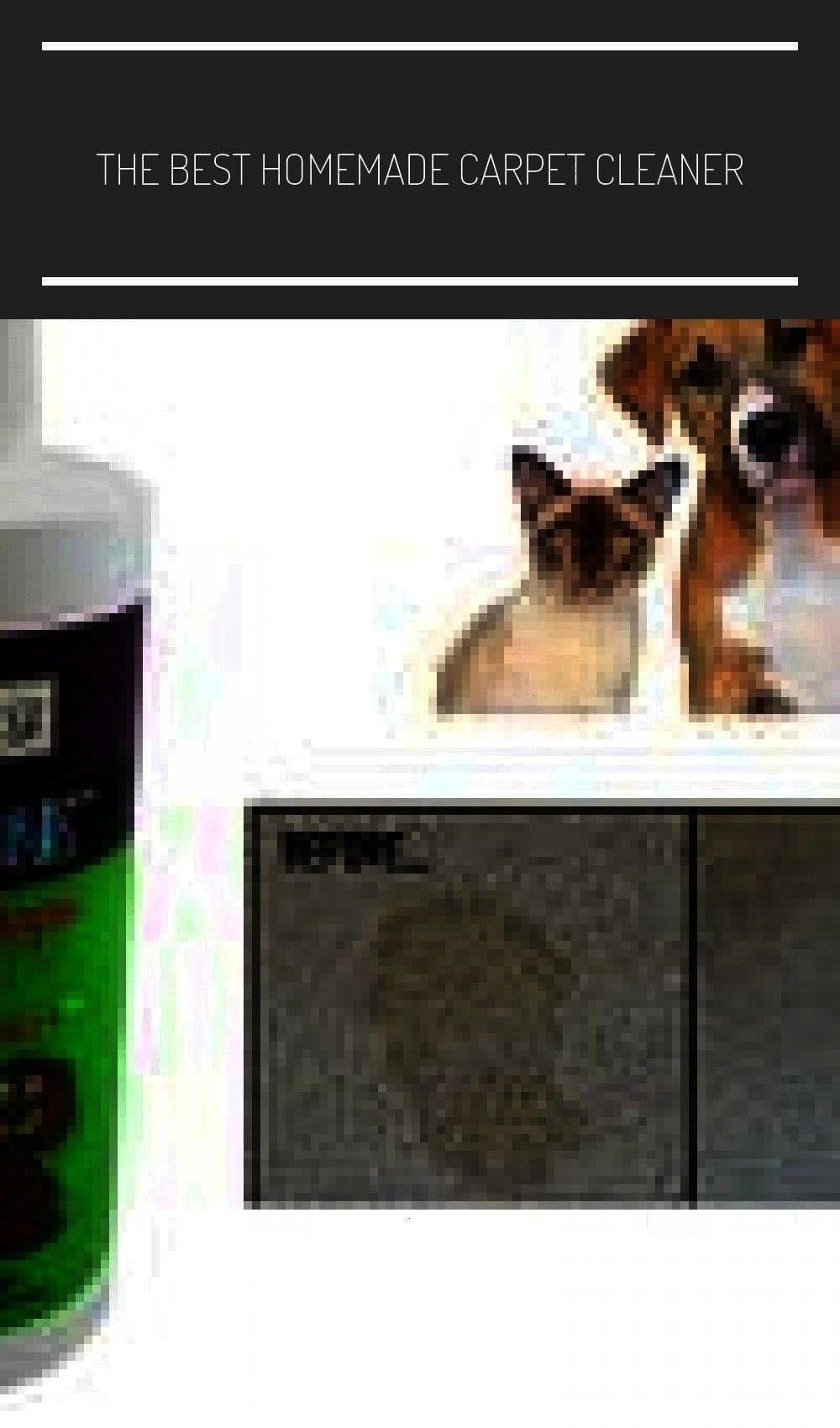 Carpetcleanerfordogurine Upholstery Beststain Odorodor Homemade Carpetcleanerfordogurine Upholstery In 2020 Pet Stains Carpet Cleaner Homemade Rugs On Carpet