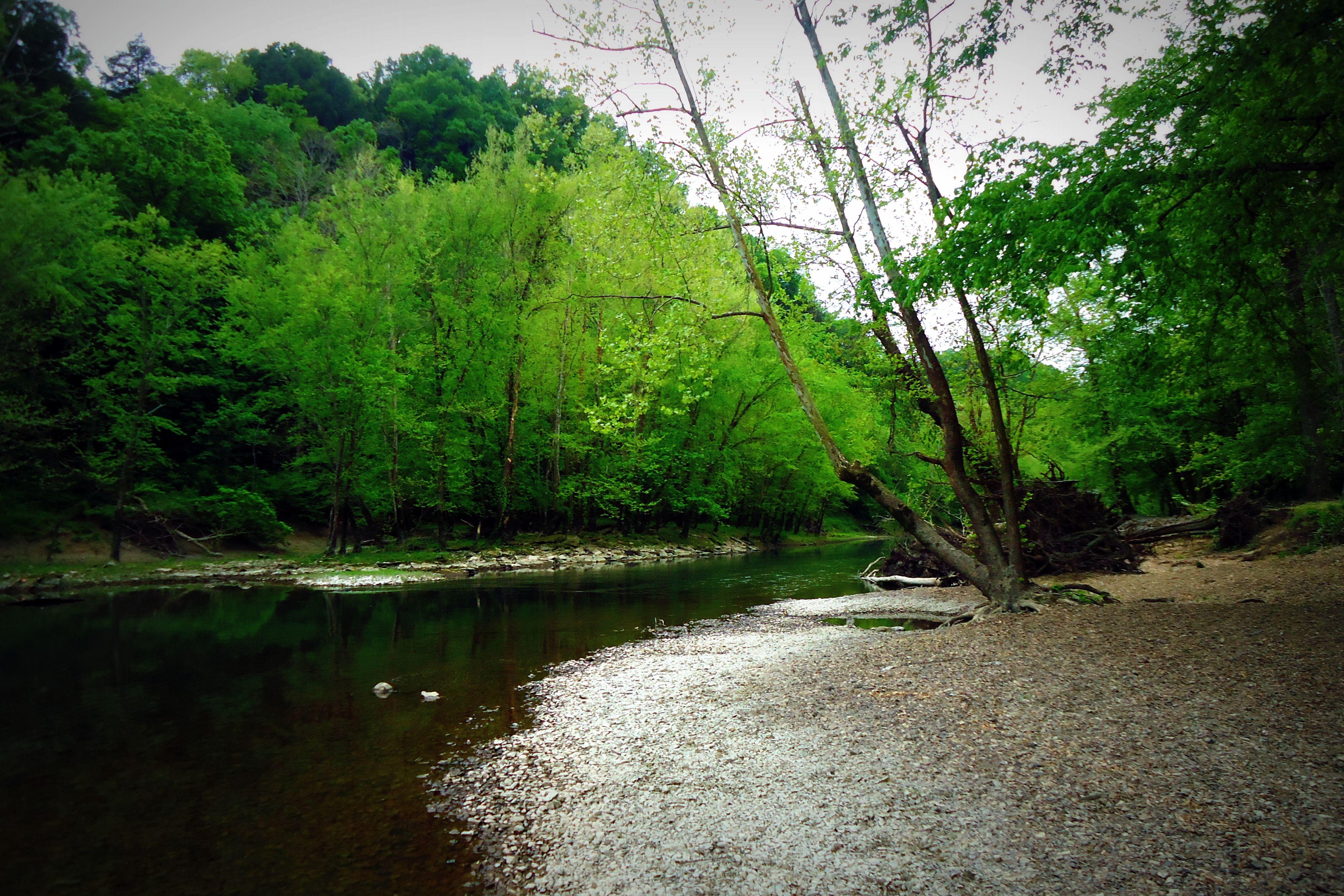 Green River Lake Kentucky 2012 Green River