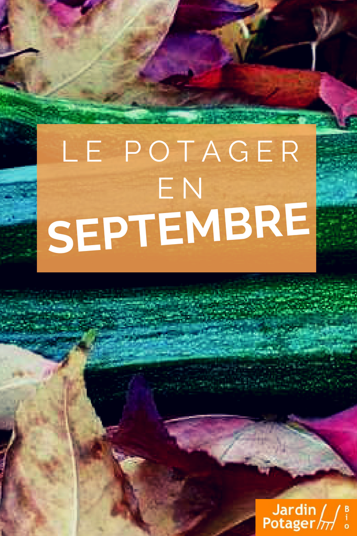 agenda mensuel du jardinier calendrier du potager semis. Black Bedroom Furniture Sets. Home Design Ideas