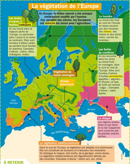 La Vegetation De L Europe Geographie Geographie Ce2 Europe