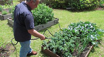 Harvest Vegetables From Your Raised Bed Garden Without Interruption Plan Your Succession Planting Strategy For The Whole Year Raised Garden Beds Succession Planting Garden Beds