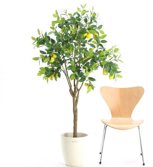 Cool Awesome A Tree Pot Ideas Example http://freshouz.com/a-tree-pot/