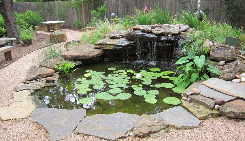 Consejos para un buen mantenimiento de tu estanque Estanques