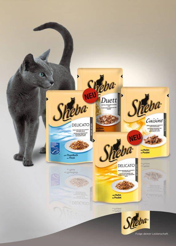 """Sheba Delicato """"mit Huhn in saftigem Gelee"""" und """"mit Thunfisch in saftigem Gelee"""" bietet Katzen besondere Genussmomente. Bild: Mars"""