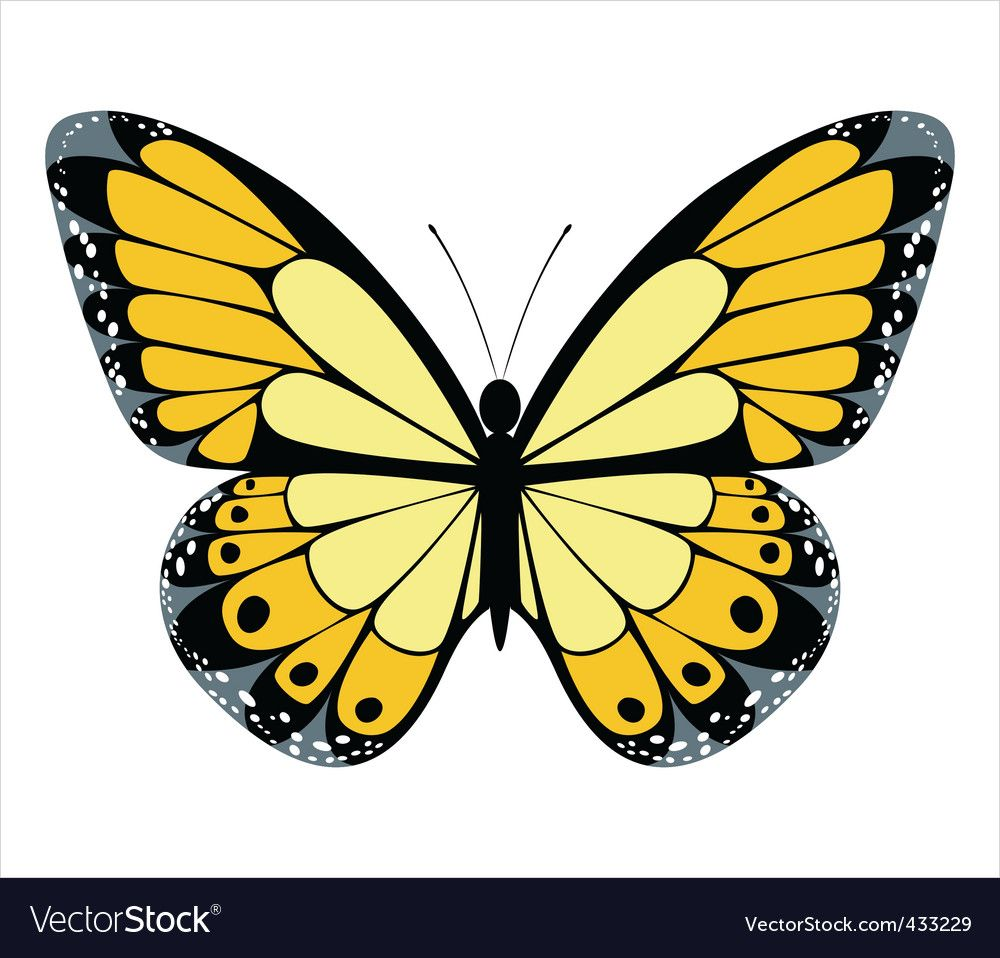 Yellow Butterfly Illustration Butterfly Clipart Winged Butterfly Yellow Butterfly Png Transparent Clipart Image And Psd File For Free Download Butterfly Illustration Butterfly Background Butterfly Clip Art