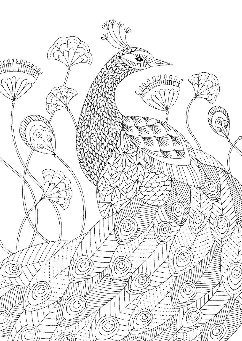 81uru31 Nel Jpg 1000 1407 Animal Coloring Pages Millie Marotta Animal Kingdom Coloring Books