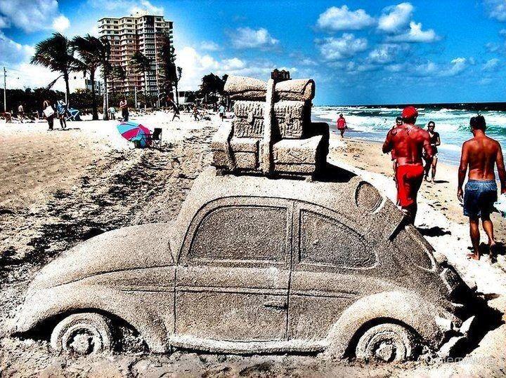 Sand bug haha, that's cool