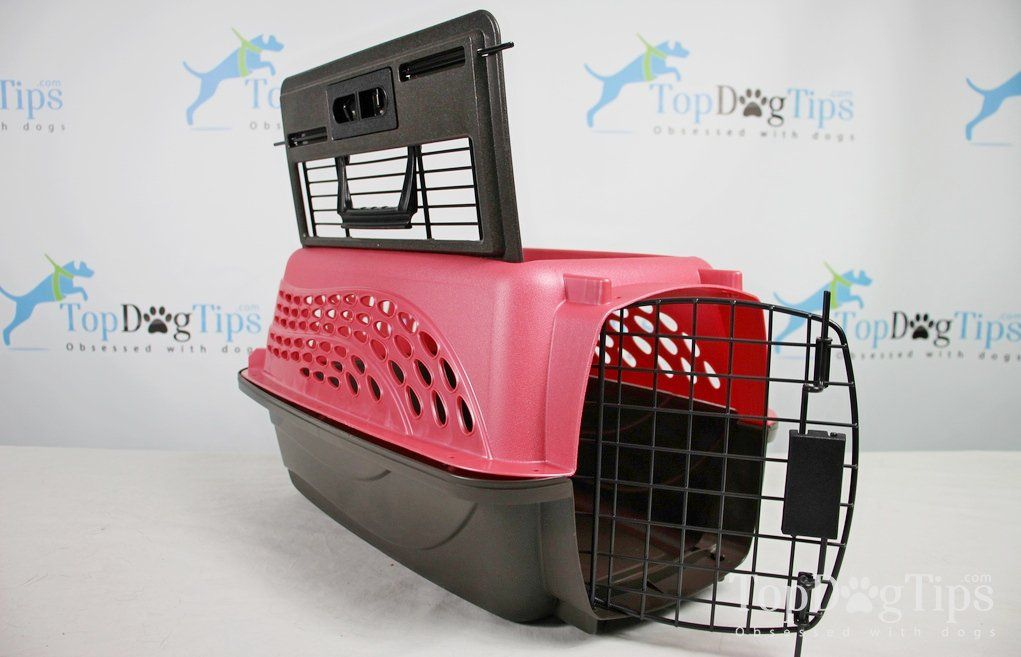 Review Petmate Two Door Pet Kennel Pet Mat Pet Carriers Pet Kennels