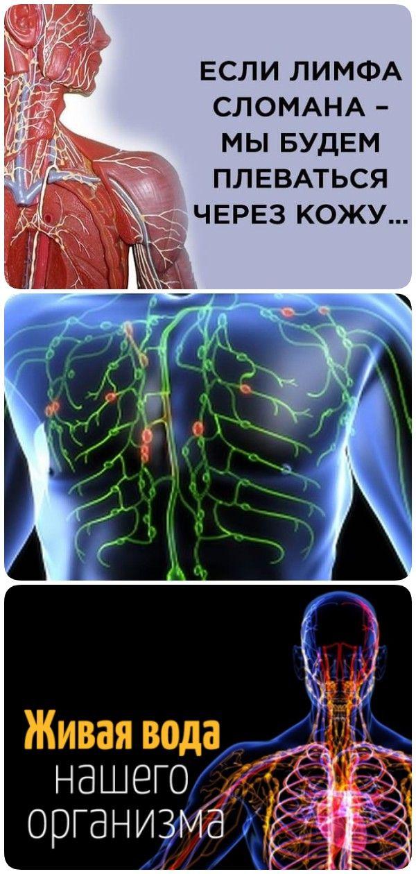 Очищение лимфатической системы – упражнения, диета, народные.