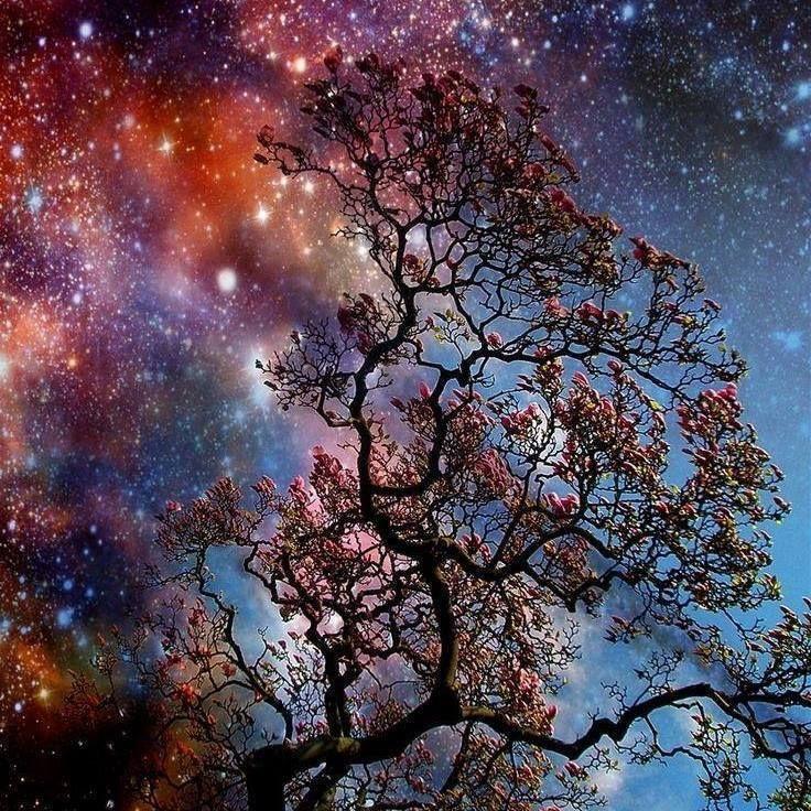 Estrelas... Não tenho certeza de nada, mas a visão das estrelas me faz sonhar - Vicent Van Gogh