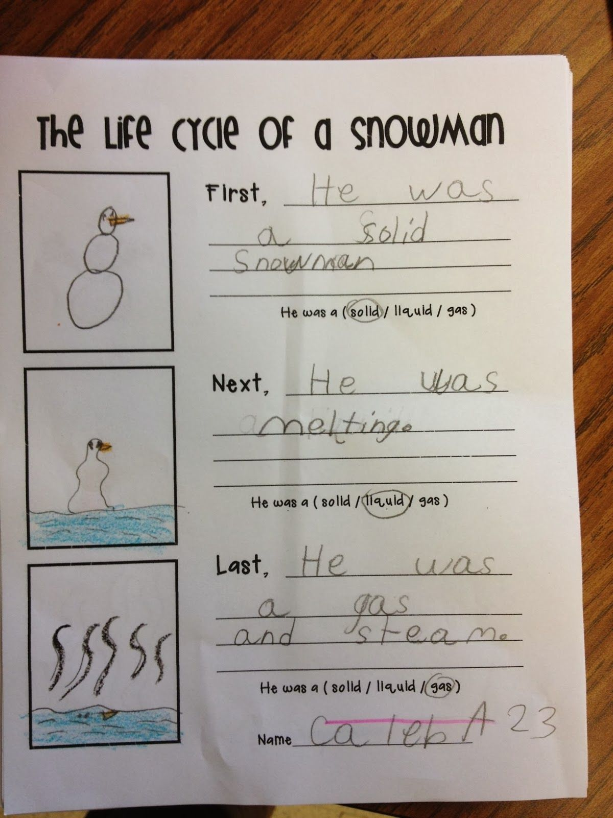 worksheet First Grade Matter Worksheets life cycle of a snowman and states matter classroom ideas matter