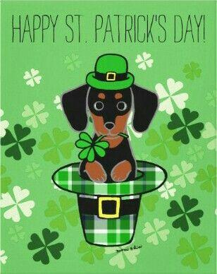 St Patrick S Day Dachshund Birthday Dachshund Illustration Dachshund Love
