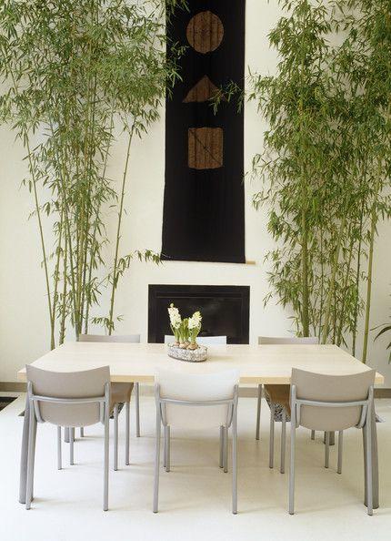 White Asian Dining Room Asian Homes Pinterest Bambú decoración - decoracion con bambu