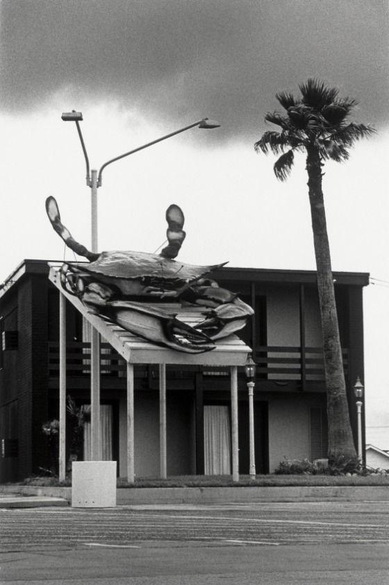 Galveston, Texas Ben Blackwell (United States, Texas, Lubbock, born 1944) United States, 1972 Gelatin-silver print