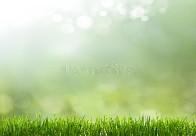 Spring Or Summer Season Abstract Nature Background With Grass And Blue Sky In T Aff Season Abstract Nature Backgrounds Abstract Nature Nature Images