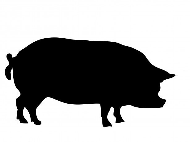 Insert Pictures Pig Silhouette Animal Stencil Silhouette Art