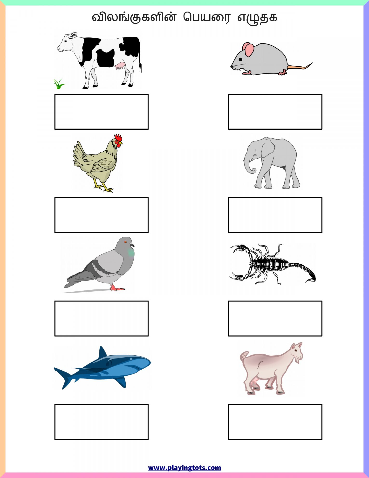 10 1st Grade Animals Worksheet Printable