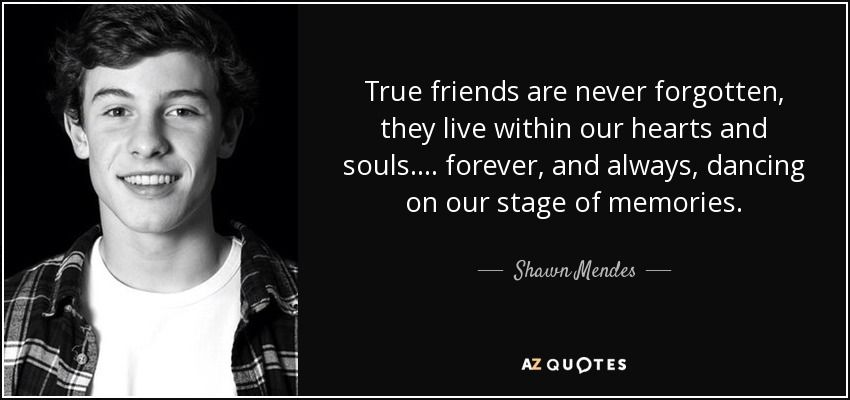 """Discover Shawn Mendes famous and rare quotes. """"True ..."""