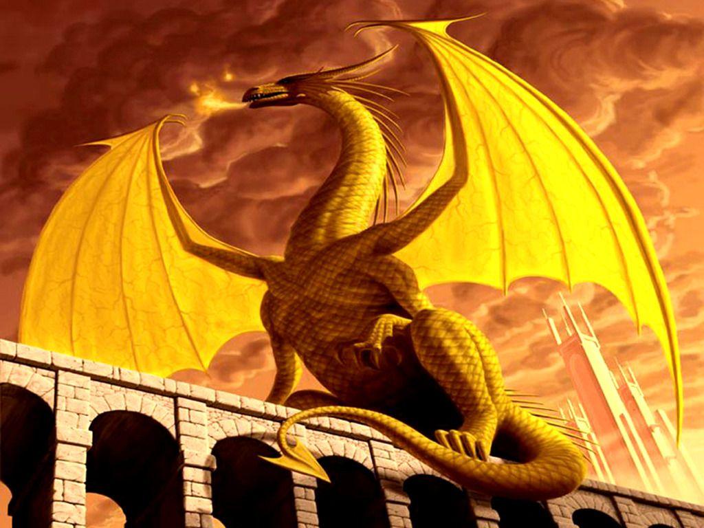 Gold Dragon HD Wallpaper
