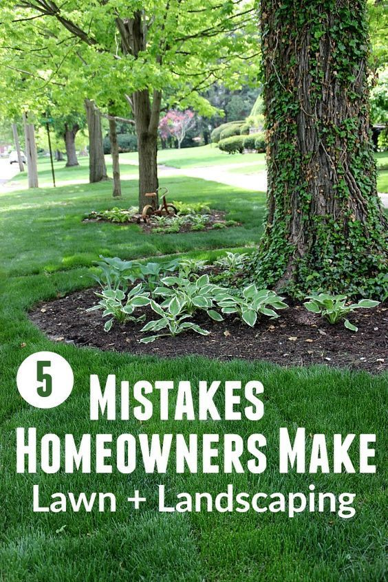 5 Mistakes Homeowners Make The Lawn And Landscape Edition Landscaping Around Trees Lawn And Landscape Front Yard Landscaping