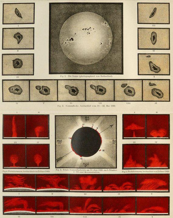 1890 Antique print of SOLAR, SUN PROMINENCES. Solar Flares. The Sun. Astronomy. 125 years old celestial print.