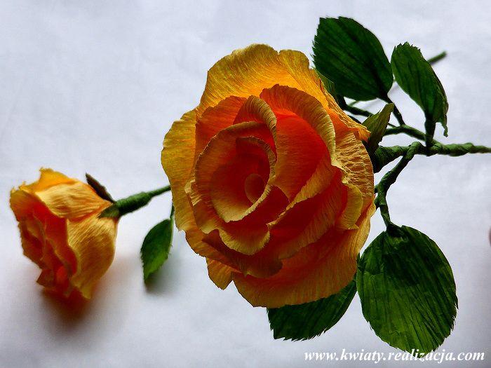 Klasyczna Roza Instruktaz Najpiekniejsze Kwiaty Z Bibuly Maria Czupryna Paper Flowers Crepe Paper Flowers Flowers