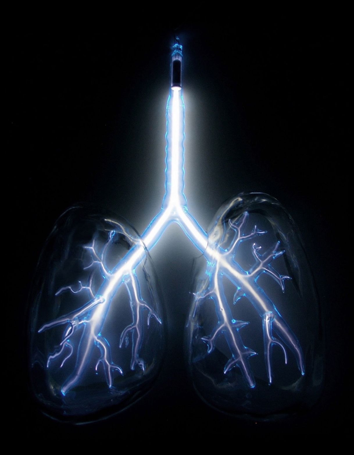 Jessica Lloyd-Jones - Electric Lungs