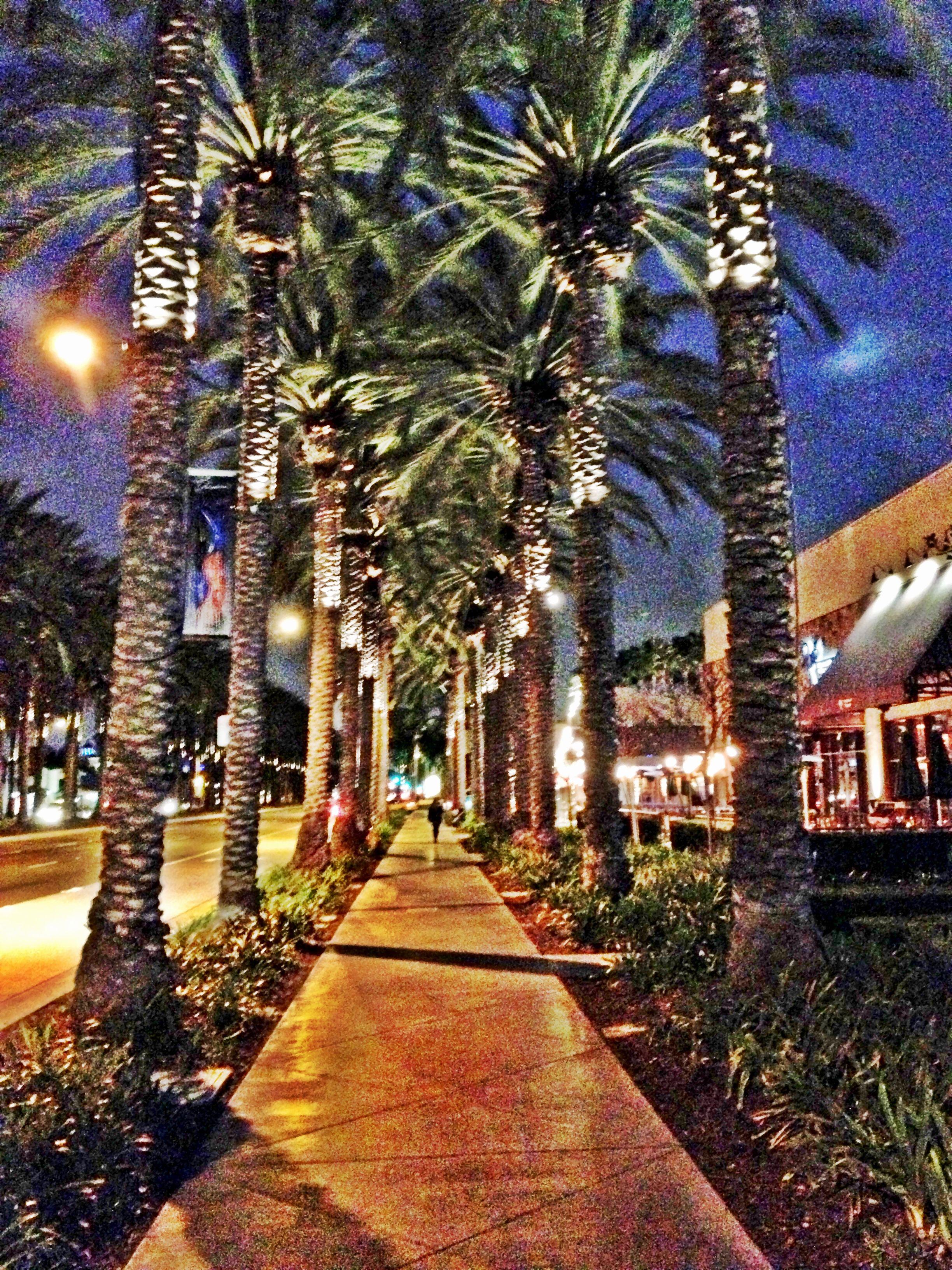 Restaurants In Garden Walk Anaheim: The Garden Walk - Anaheim