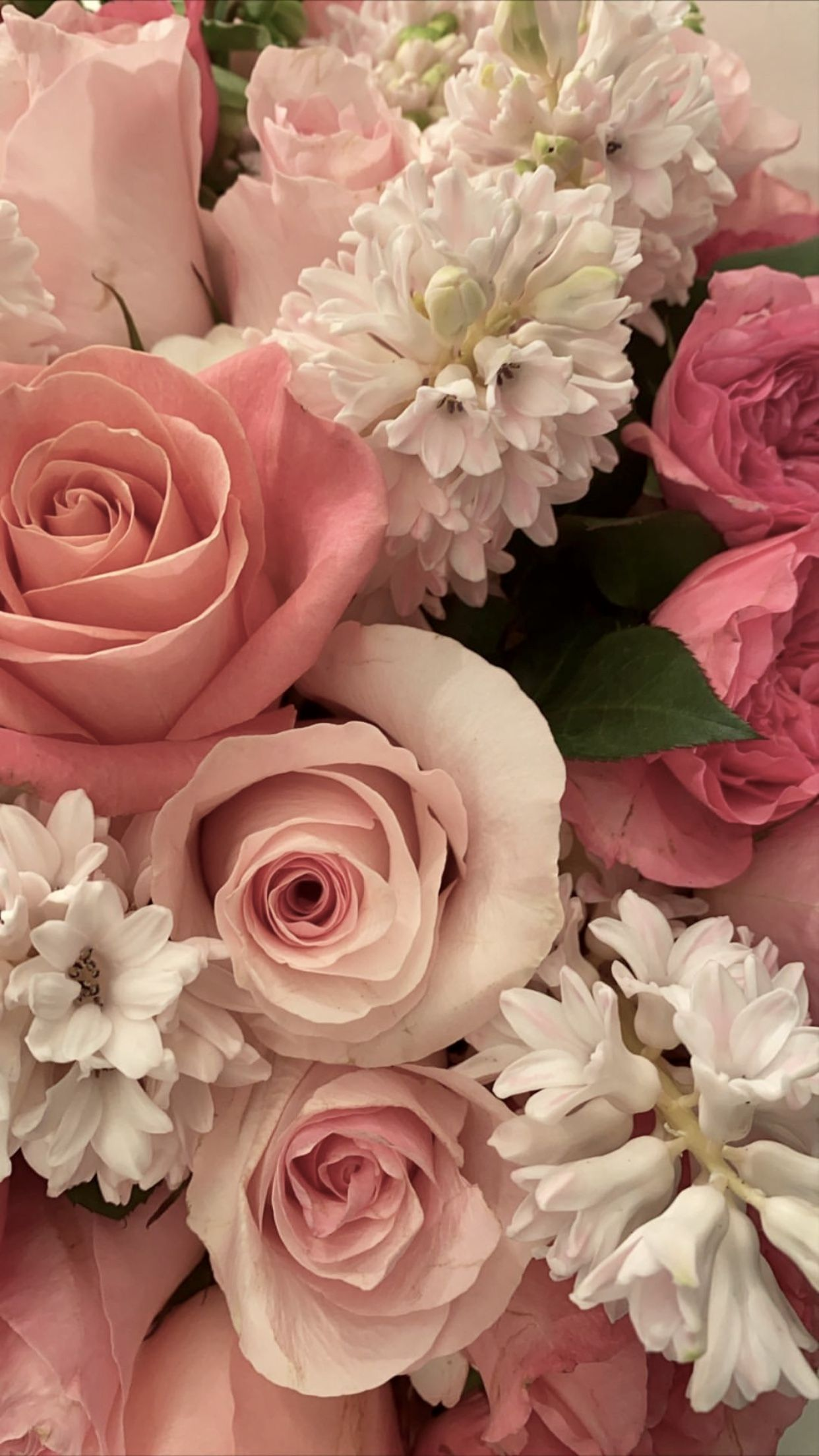 Cute Rose Wallpaper Rose Wallpaper Pink Floral Background White Roses Background