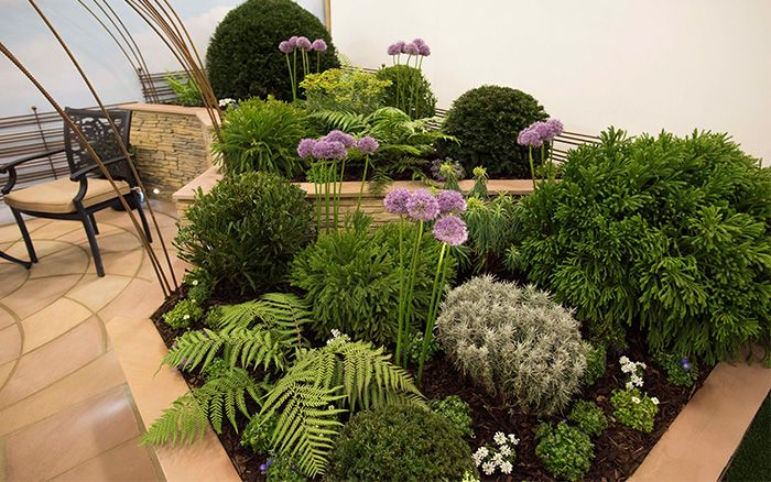 Photo of Best small garden design ideas from the Young Gardeners competition