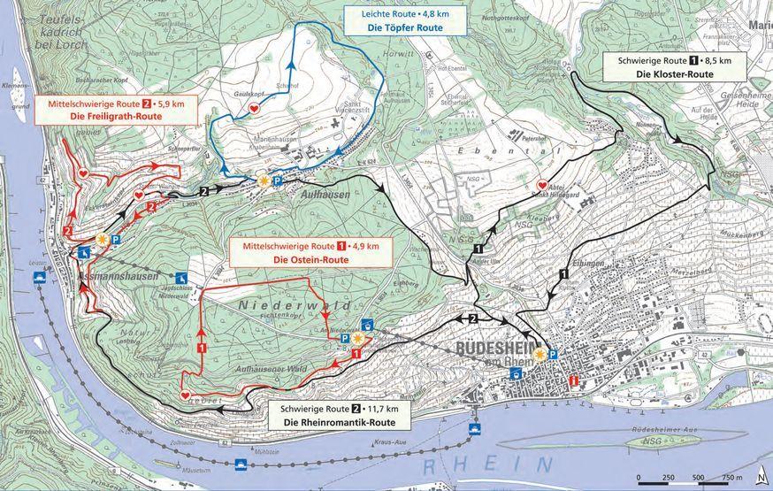 Stay Active Rudesheim Am Rhein Rheine Welterbe