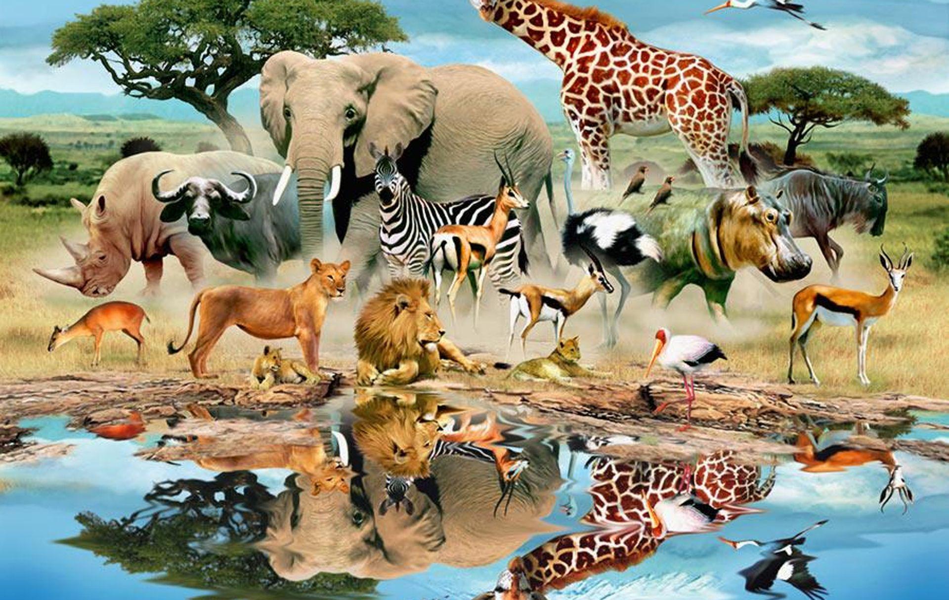 Watering hole wildlife wildlife pinterest for Animal mural wallpaper