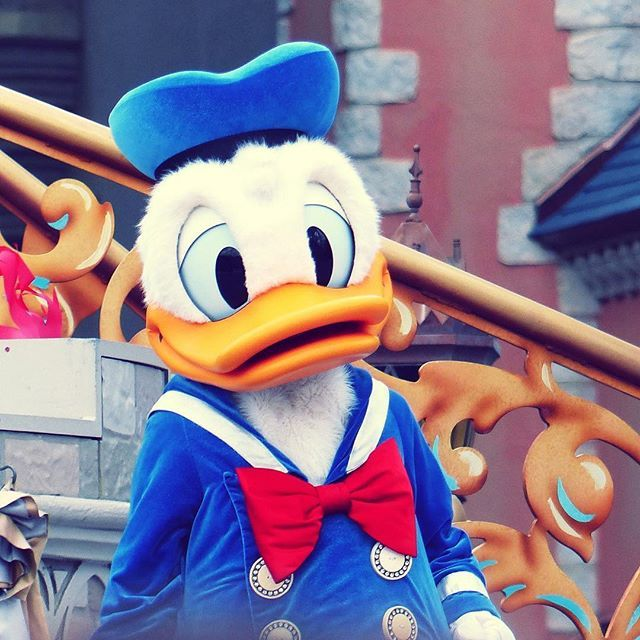 Happy Birthday Donald Duck!! 84 Years Young Today! Donald