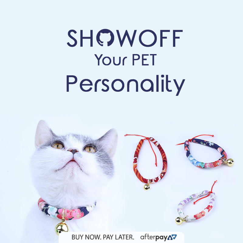 Make Your Pet Look Like A Star Today Keep Your Meaww In Style With Pretty Bella Collar Hellopetlovers Catlovers Pet Pet Collars Cat Collars Your Pet